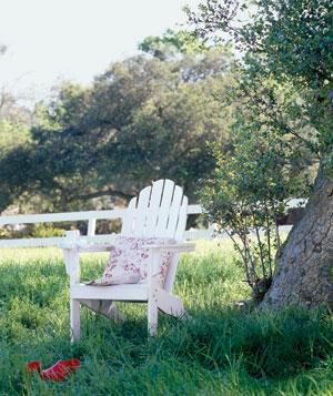 White Adirondack chair in backyard