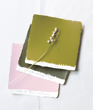 Olive green and petal pink paint swatches
