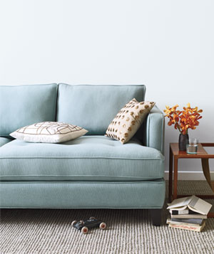 Blue sofa in a living room