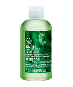 Body Shop's Tea Tree Skin Clearing Facial Wash