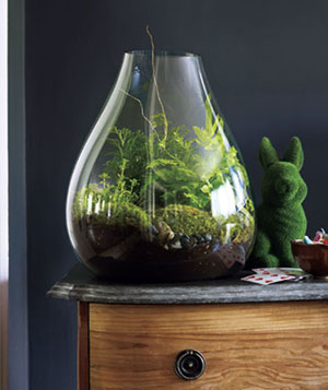 Large terranium on a marble-topped wooden dresser