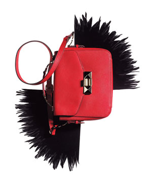 Pink purse and black feathers