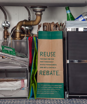 Trash and recycling under the sink