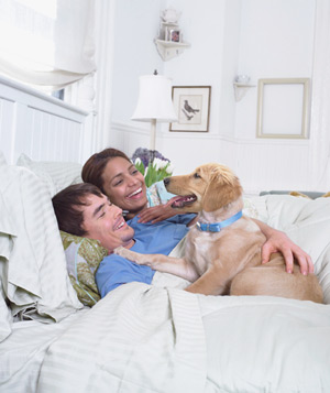 Couple cuddling in bed with dog