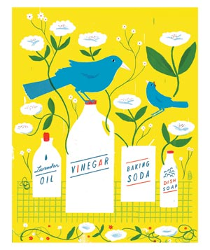 Illustration of birds, flowers, and cleaning products
