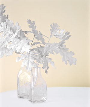 Foliage painted white as centerpiece