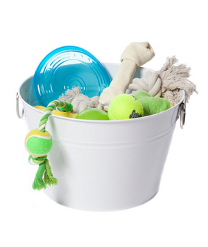 Pail full of pet toys