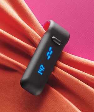 Fitbit digital body monitor