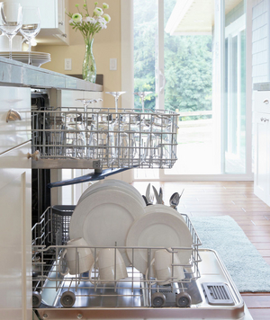 Shards of Glass in the Dishwasher