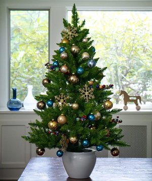 Blue and gold Christmas tree