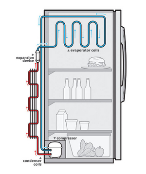 how does a refrigerator work real simple rh realsimple com