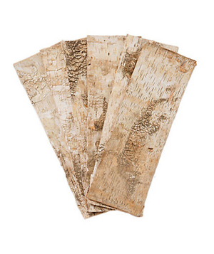 Birch Bark Strips