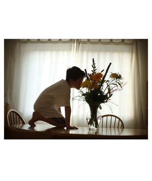 Kitchen Table: Elijah Archibald smelling flowers