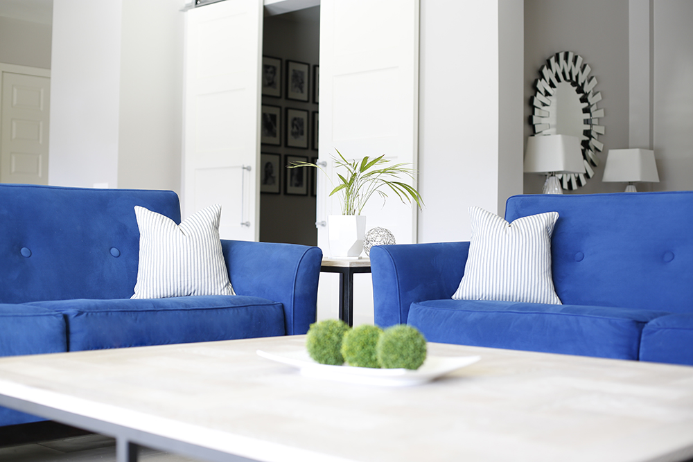 Blue Living Room. Colorful Sofas