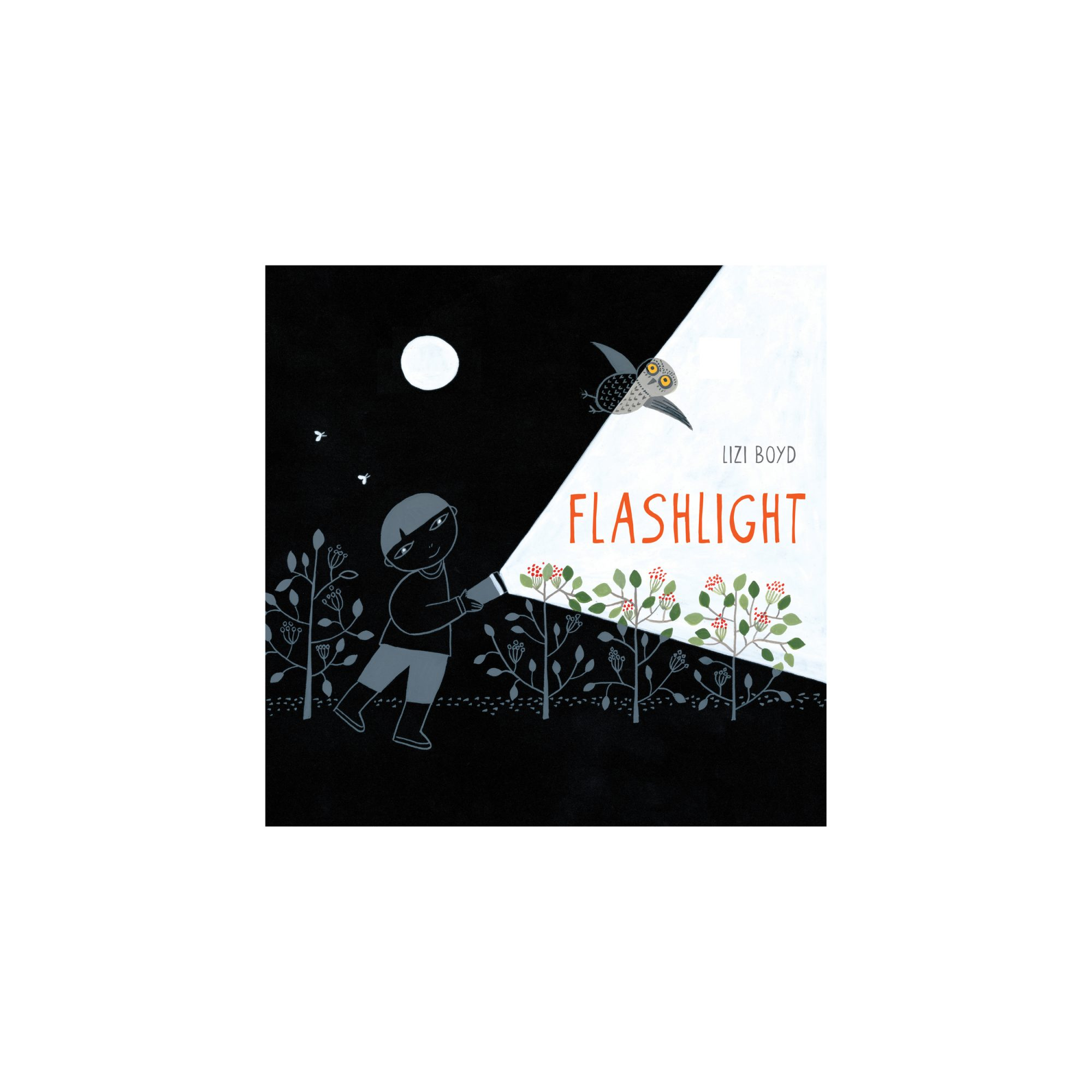 <em>Flashlight, </em>by Lizi Boyd