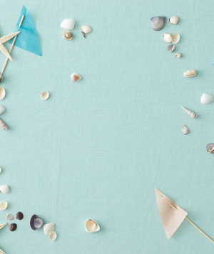 Beach-themed bridal shower, shells