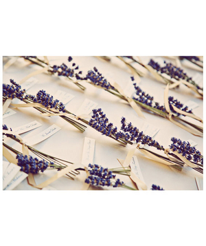 Purple flower seating cards