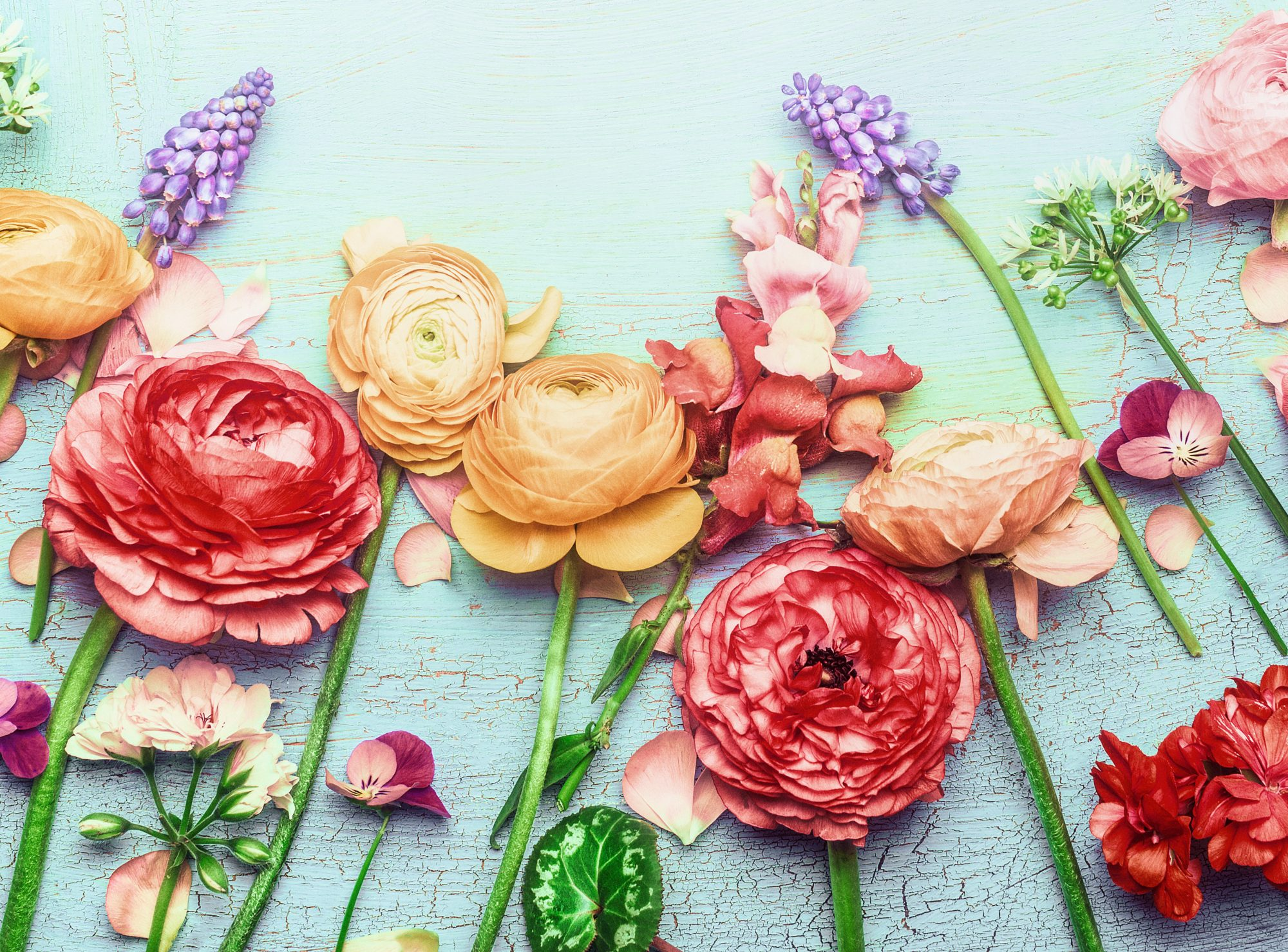 How to Arrange Flowers, pretty spring flowers