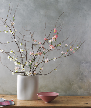 How to arrange flowers, quince bouquet in a vase