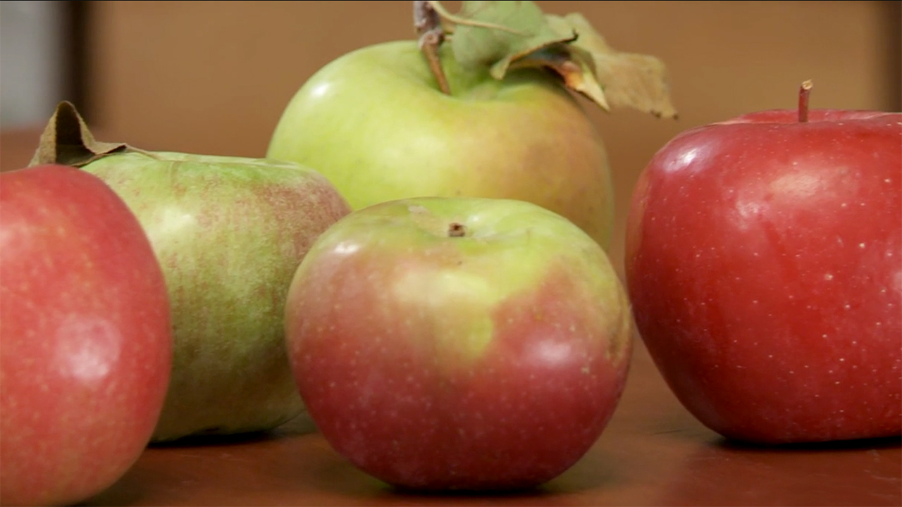 Peel and core an apple tout