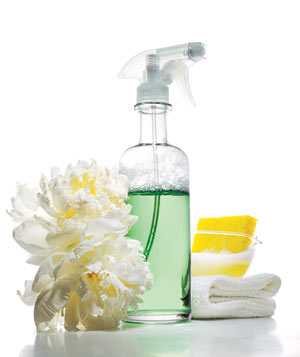 Cleaning spray with flowers, sponge, and cloth
