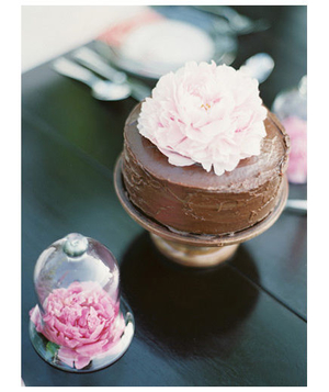 Chocolate cake with a peony on top