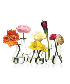 Single flowers in small vases