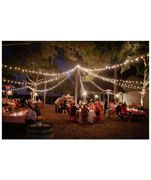 Strings of lights at an outdoor wedding reception