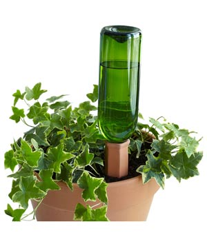 Recycle a Bottle Plant Nanny Stake