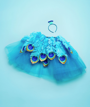 Peacock costume (down) how-to