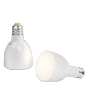Bulb Flashlight