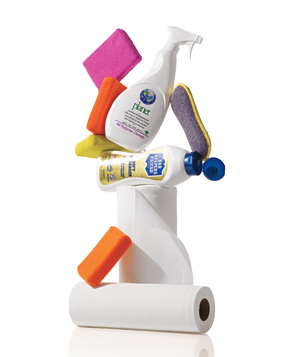 Sponges, paper towels and cleaners