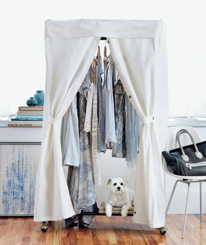 Wardrobe rack and dog in white room with blue accents
