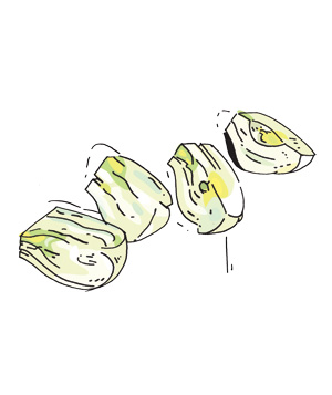 Illustration: how to prepare cooked fennel