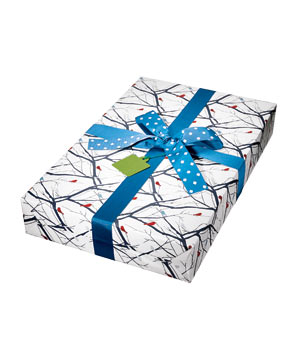 Snow Bird gift wrap
