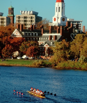 Harvard rowing crew
