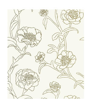 Peonies Wallpaper by Tempaper