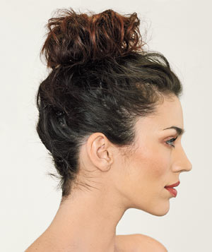 The High Bun