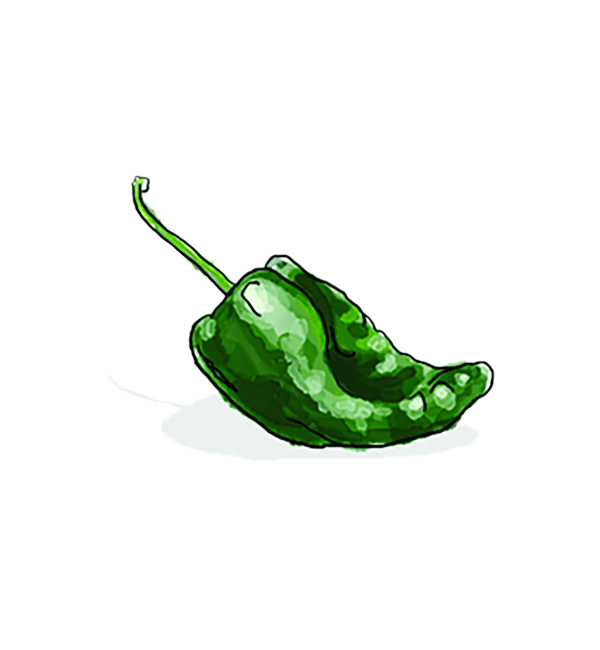 Illustration: Poblano pepper