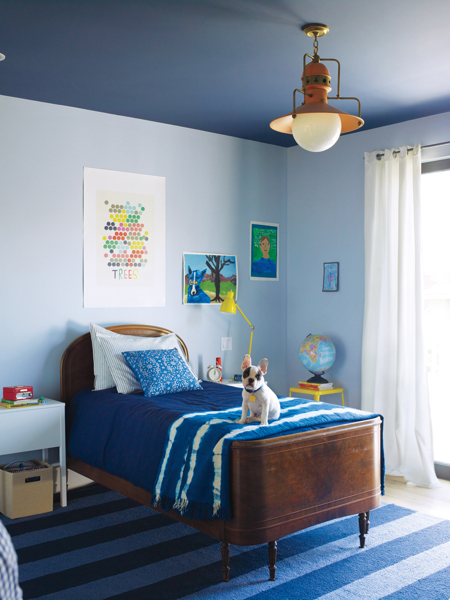 Dog In Blue Bedroom