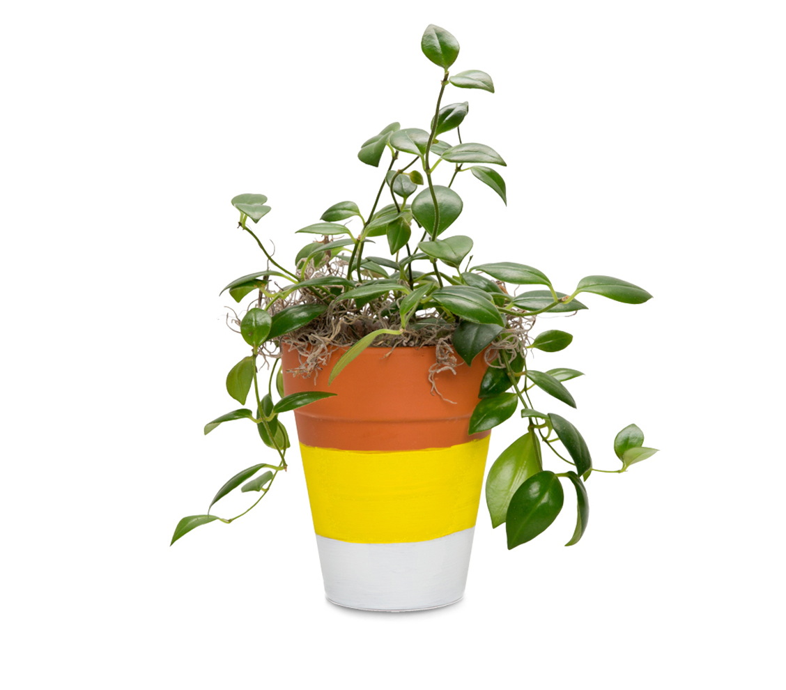 Candy Corn Terracotta Pot