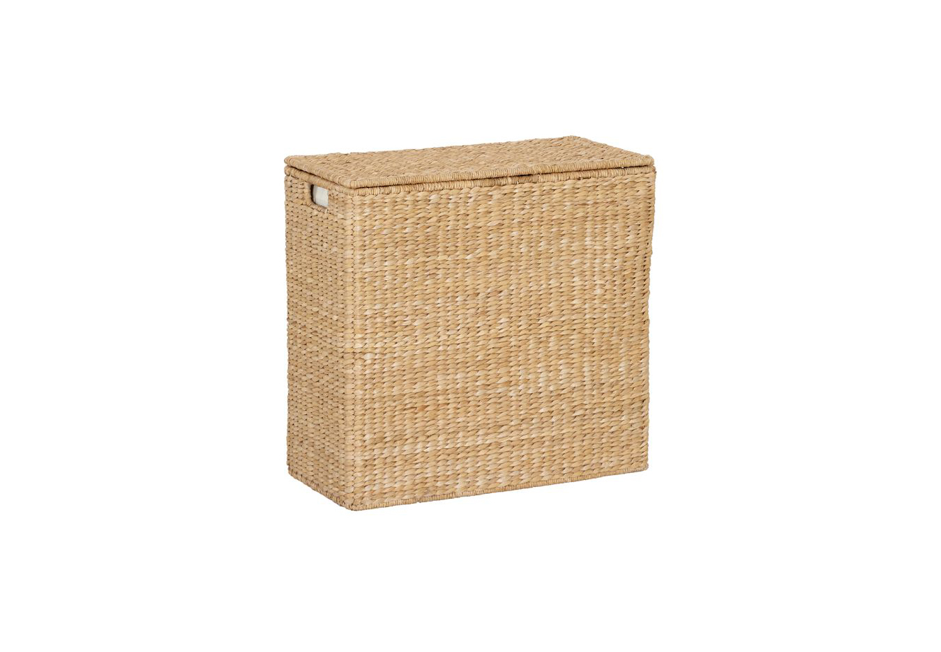Divided Hamper and Liner