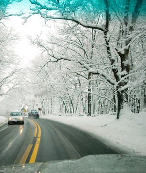 Car driving down road in snowy woods