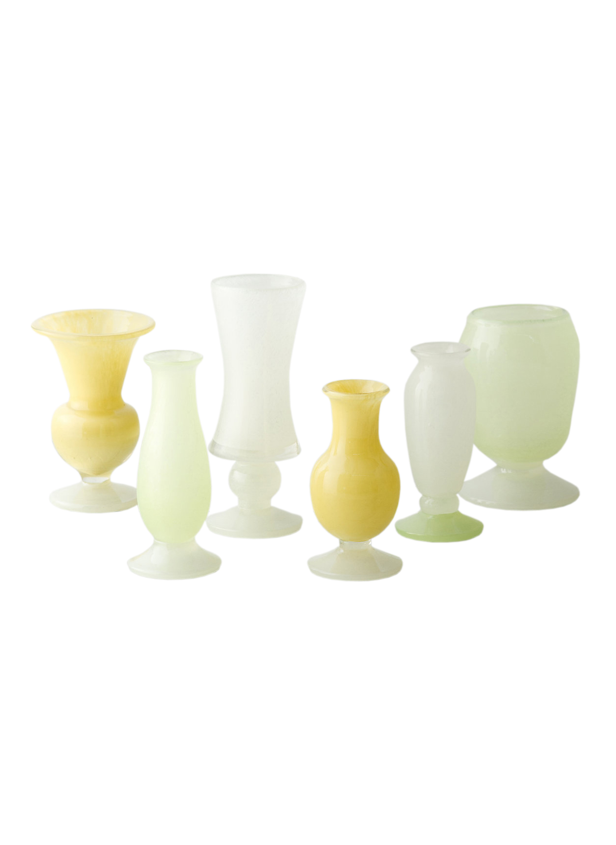 Frosted Citrus Vase Collection