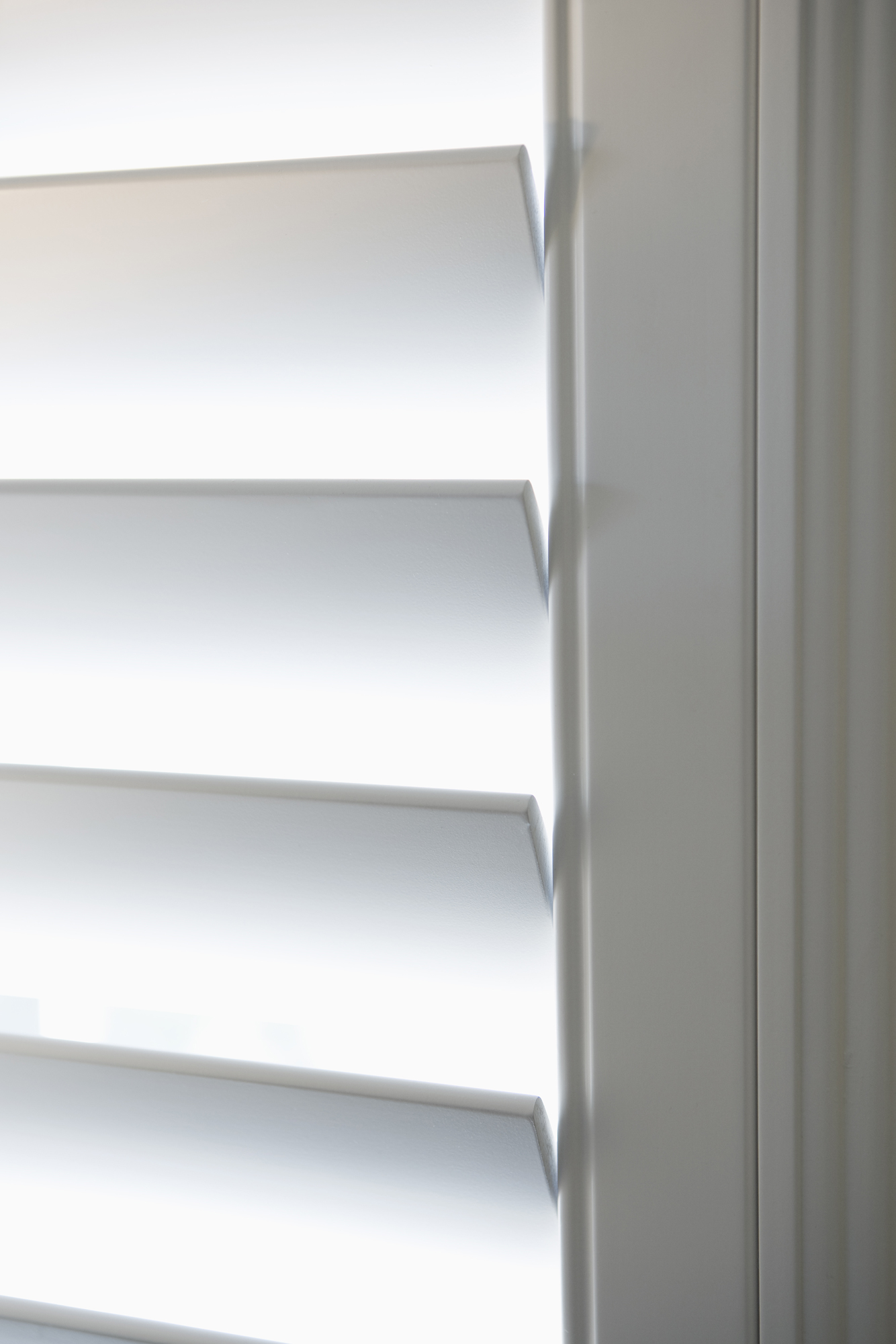 Blinds and Pleated Shades