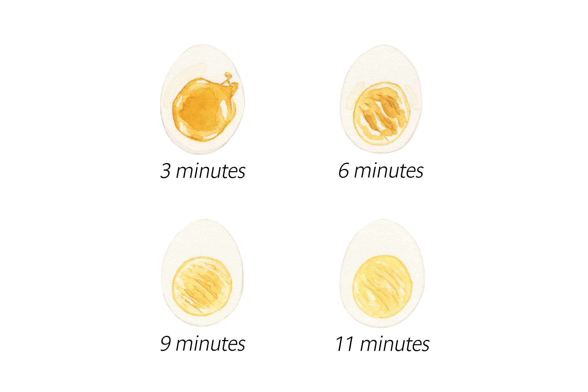 Illustration of hard- and soft-boiled eggs