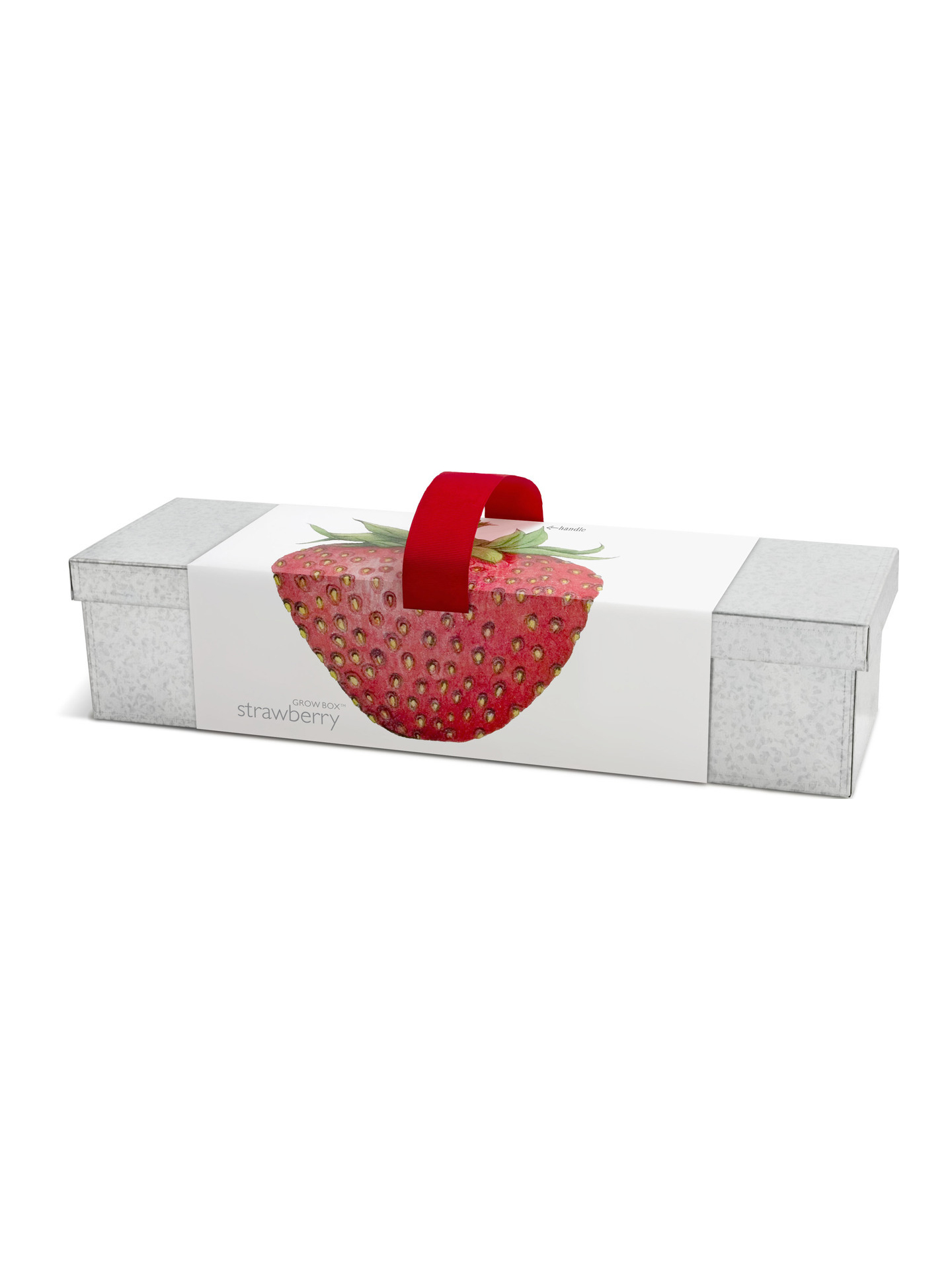 Potting Shed Creations Window Box Strawberry