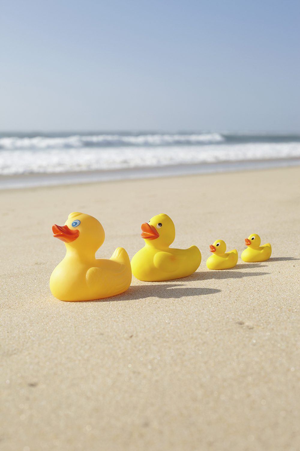 Family of rubber ducks on beach