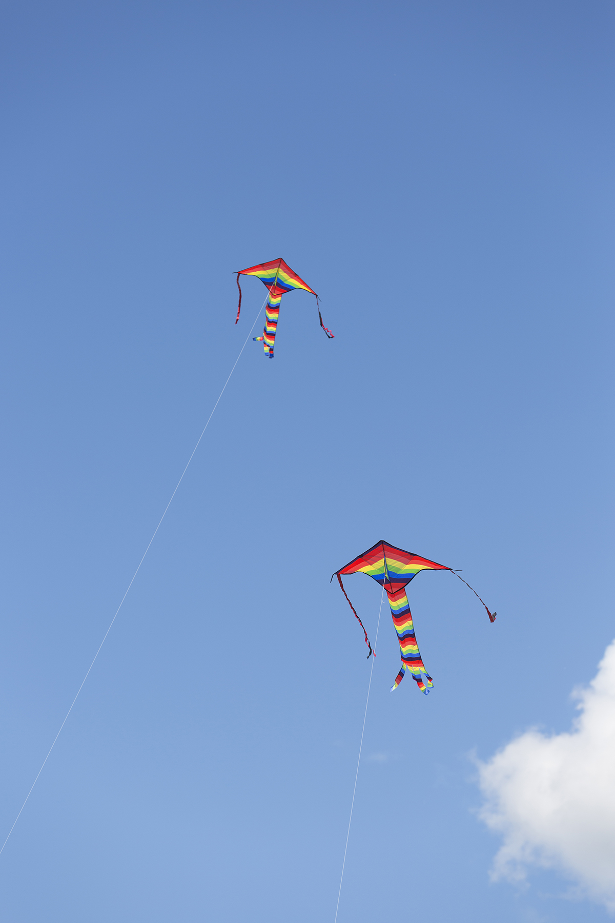 2 kites flying