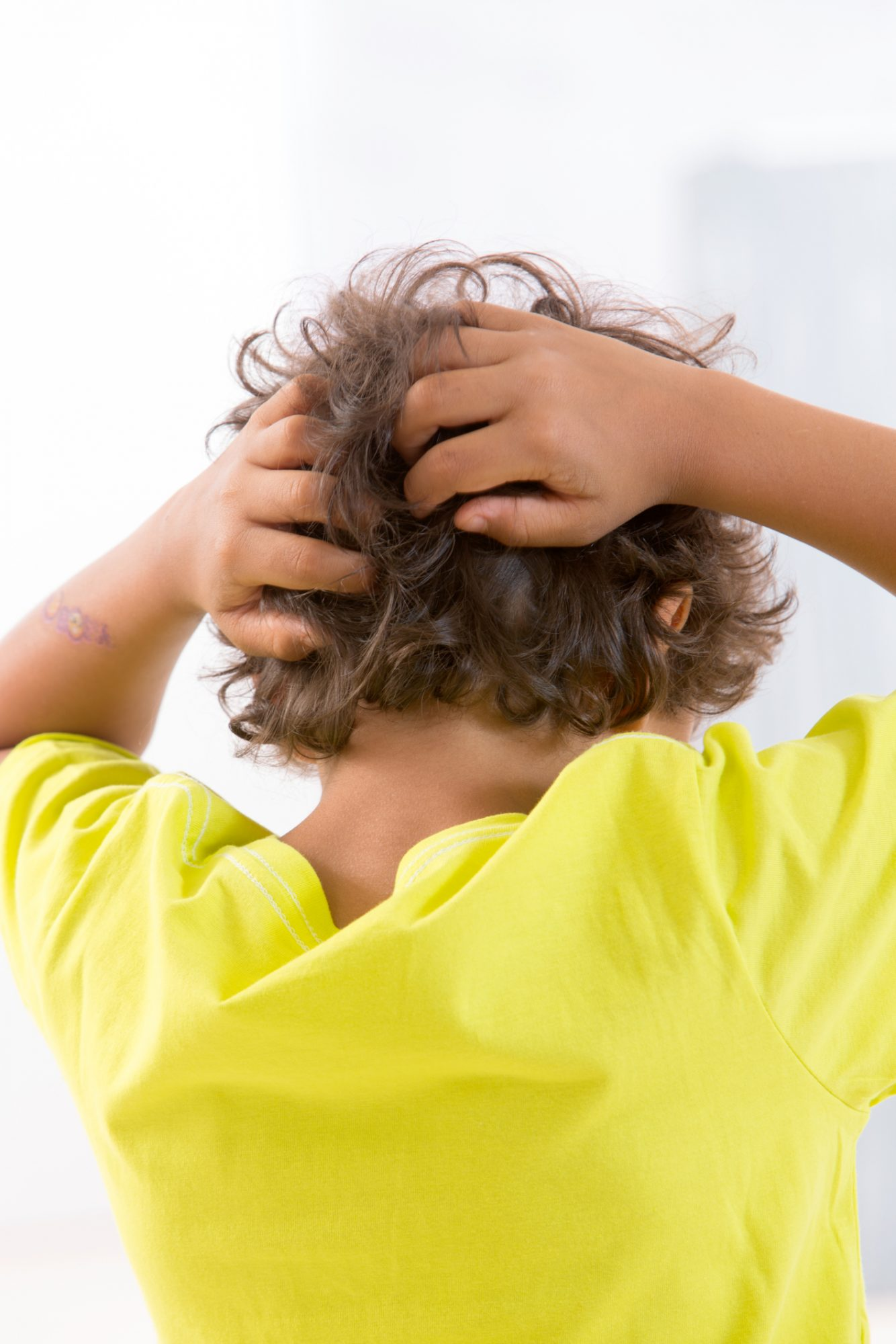 how-to-get-rid-of-head-lice